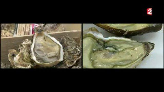 """Huîtres """"artificielles"""" : des ostréiculteurs veulent un étiquetage distinctif"""