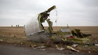 Un débris de l'avion de la Malaysia Airlines, toujours présent sur le site du crash, près de Grabove, dans l'est de l'Ukraine, le 11 novembre 2014. (MENAHEM KAHANA / AFP)