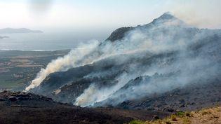 La Corse avait déjà connu de nombreux incendies durant l'été. (Photo d'illustration) (STEPHAN AGOSTINI / AFP)