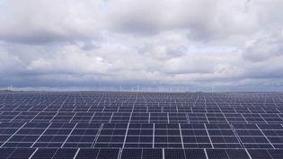Après les 16 années de mandat d'Angela Merkel, les Allemands retiendront l'accélération de la transition énergétique du pays, après la catastrophe de Fukushima (Japon). L'Allemagne met les bouchées doubles pour construire des éoliennes et des parcs solaires. (CAPTURE ECRAN FRANCE 3)