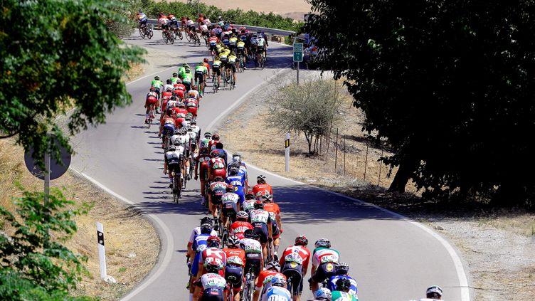 Le peloton de la Vuelta 2018 (MANUEL BRUQUE / EFE)