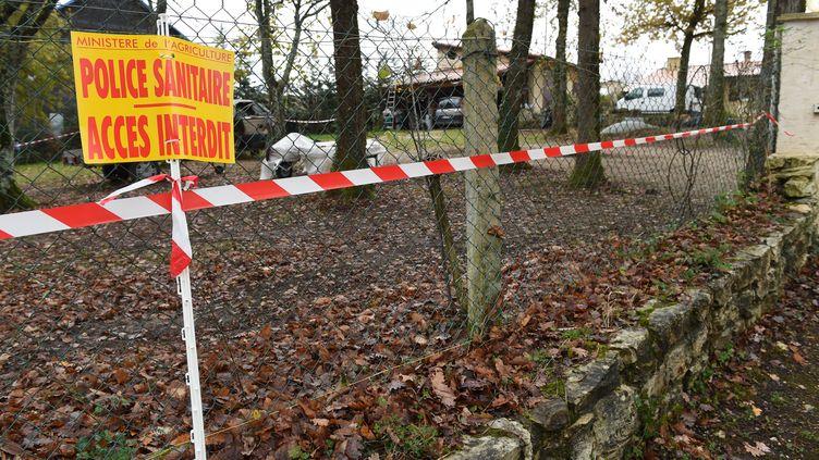 Une pancarte de la police sanitaire devant un poulailler à Biras (Dordogne), le 25 novembre 2015. (MEHDI FEDOUACH / AFP)