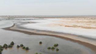 Directionle delta du Sine Saloum, au Sénégal, un parc national protégé qui héberge 76000 hectares de mangrove. Mais au fil des ans, la végétation et les palétuviers disparaissent sous l'effet d'une eau de plus en plus salée. Pour cause, la mer monte et s'engouffre dans les terres. (france 2)