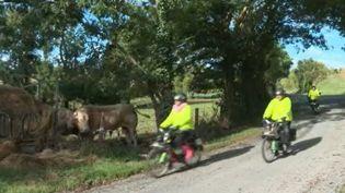 Les cyclomoteurs Solex constituent une institution en France. Même s'ils ne peuvent rouler qu'à 30 km/h maximum, les aficionados réunis en amicales prennent toujours un grand plaisir à les chevaucher sur les routes de France. (FRANCE 3)