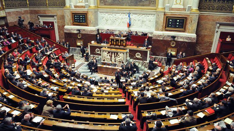 L'hémicycle de l'Assemblée nationale, le 19 janvier 2011. (WITT / SIPA)