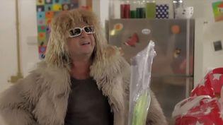 Capture d'écran de la série de publicités Cetelem, où un acteur joue un sosie du chanteur Michel Polnareff. (CETELEM / YOUTUBE)