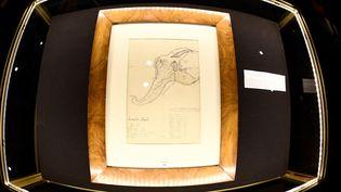 Le dessin original de la carte de l'Île Mystérieuse, tracé de la main de Jules Verne, exposé à Drouot, à Paris, le 28 février 2017  (Martin Bureau / AFP)