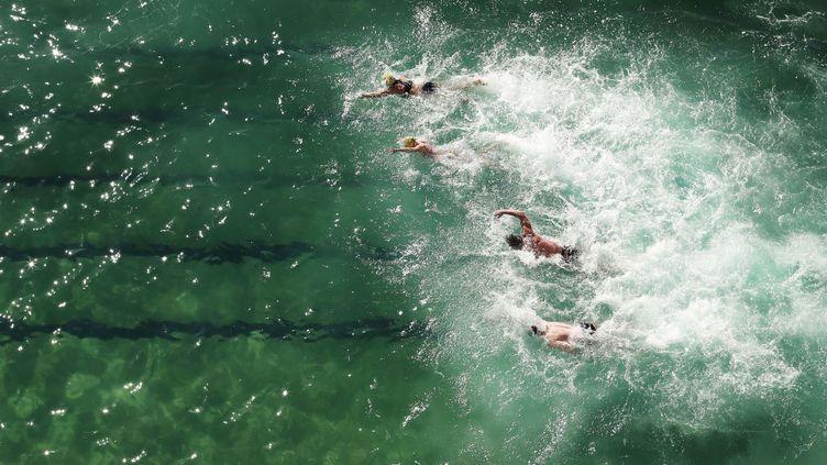 Les nageurs se sont très tôt jetés dans la mer ou dans l'océan, à la conquête de records.Ici, à Sdydney, en Australie, en juillet 2017. (GETTY IMAGES)