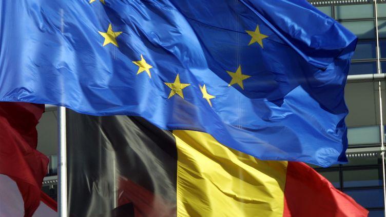 Les élus belges se sont exprimés sur la demande du milliardaire, qui souhaite obtenir la nationalité du pays. (MARTIN BUREAU / AFP)