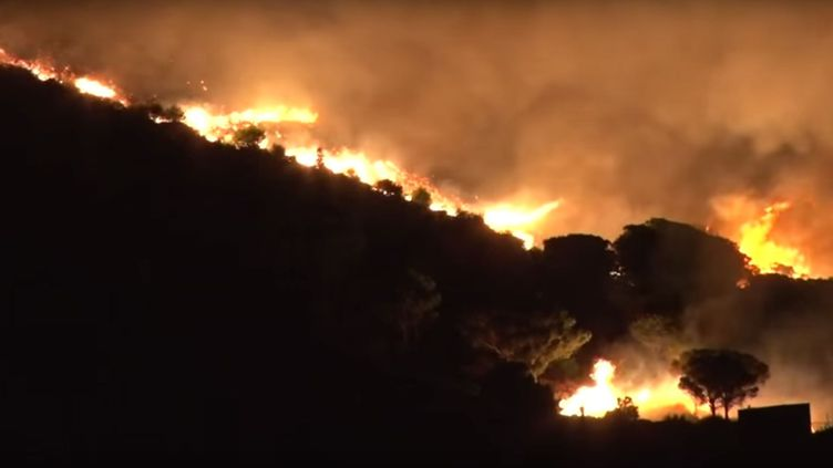 Le feu qui s'est déclaré dans le secteur de Cerbère avait déjà brûlé 150 hectares de garrigue à 6 heures vendredi 18 septembre 2015. (TRAMUNTANA / YOUTUBE)