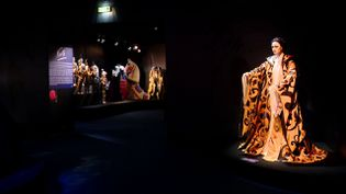 Le centre national du costume de danse organise une grande exposition consacrée au scénographe, metteur en scène et créateur de costumes franco-grec Yannis Kokkos. (France 3 Auvergne / capture d'écran)