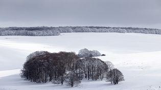 L'Aubrac sous la neige, le 10 février 2018. (CAVALIER MICHEL / HEMIS.FR / AFP)
