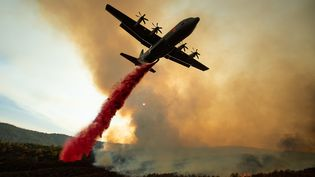 Un canadair largue du produit ignifuge sur l'incendie Mendocino Complex près de Clearlake Oaks en californie, le 5 août 2018. (NOAH BERGER / AFP)