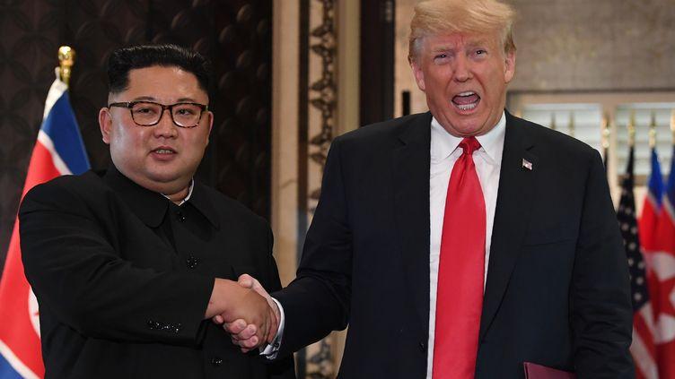 Donald Trump et Kim Jong Un lors du sommet historique entre la Corée du Nord et les Etats-Unis, à Singapour, le 12 juin 2018. (SAUL LOEB / AFP)