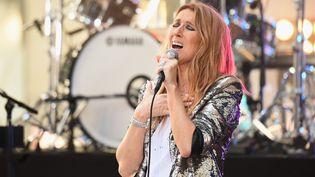 Céline Dion, à New-York, le 22 juillet 2016.  (MICHAEL LOCCISANO / GETTY IMAGES NORTH AMERICA / AFP)