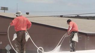 Dans le Finistère une entreprise propose de repeindre en blanc le toit des habitations pour lutter contre la chaleur. Elle a de plus en plus de demandes. (CAPTURE ECRAN FRANCE 2)
