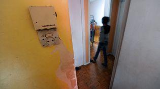 Dans un logement insalubre à Toulouse (Haute-Garonne), en 2012 (ERIC CABANIS / AFP)