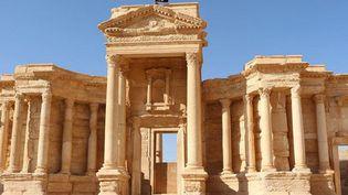 La cité antique de Palmyre, en Syrie  (WELAYAT HOMS / AFP)