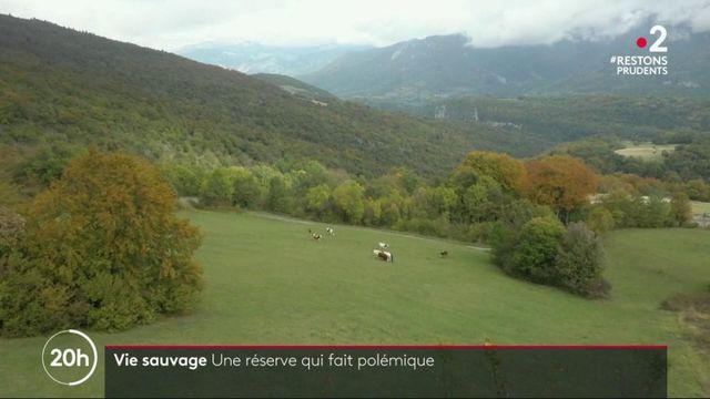 Environnement : ils rachètent les forêts pour protéger la nature
