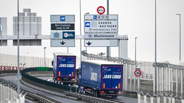 Des camions en direction du Tunnel sous la Manche, le 4 janvier 2021 (illustration). (DENIS CHARLET / AFP)