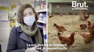 VIDEO. Comment bien choisir ses œufs ? (BRUT)