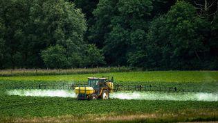 Un agriculteur épand des pesticides dans un champ de Bailleul (Nord). (PHILIPPE HUGUEN / AFP)
