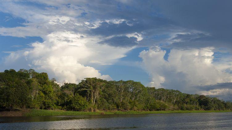 La forêt amazonienne prèsd'Iquitos, au Pérou, le 29 mai 2006. (WOLFGANG KAEHLER / LIGHTROCKET / GETTY IMAGES)