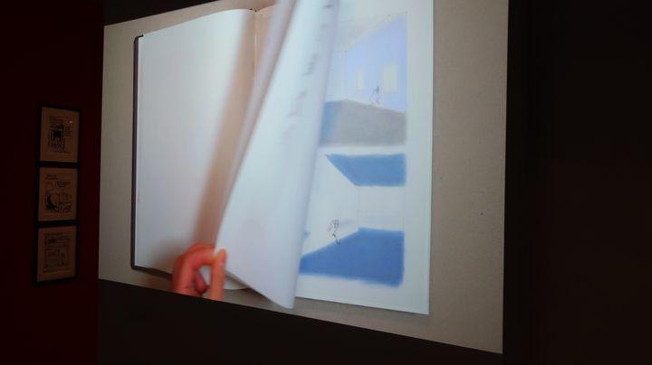 """Le journal intime dessiné de Catherine Meurisse, présenté en vidéo dans l'exposition""""Catherine Meurisse- La vie en dessin"""", 29 septembre 2020 (Laurence Houot / FRANCEINFO CUlture)"""