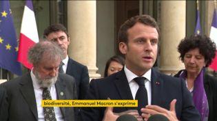Le président de la République, Emmanuel Macron, le 6 mai 2019 sur le perron de l'Elysée. (FRANCEINFO)