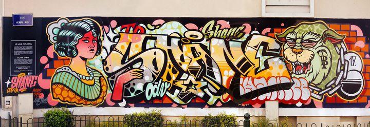 Fresque du street artist Shane, réalisée en avril 2017 sur le mur du Cinéma des Carmes, à Orléans.  (Robert Malnoury)