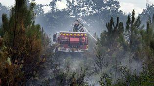 Les pompiers luttent contre un incendie de pinède, à Saint-Jean-d'Illac (Gironde), le 24 juillet 2015. (  MAXPPP)