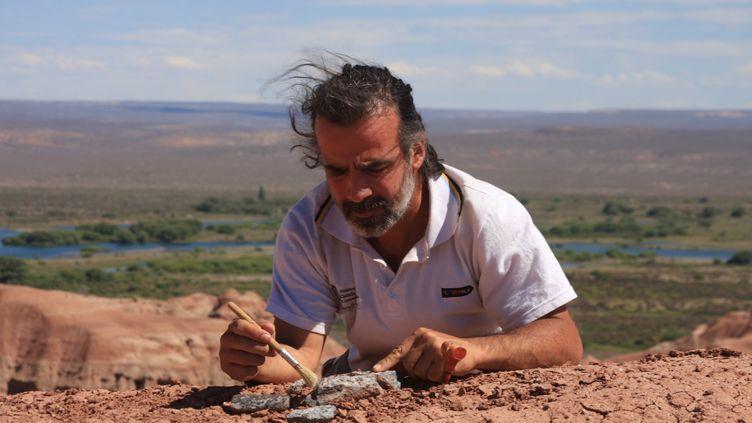 La paléontologue argentin Sebastian Apestegui travaillant en Patagonie (Argentine), le 8 décembre 2013. (AFP)
