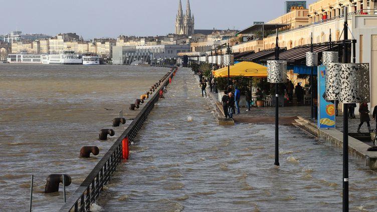 La Garonne en crueà Bordeaux (Gironde), le 13 février 2016. (MAXPPP)