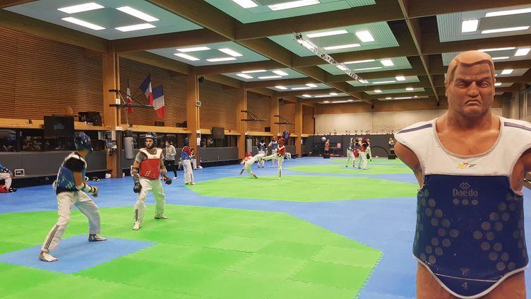 Séance d'entraînement à l'INSEP pour l'équipe de France de taekwondo (CECILIA BERDER / FRANCEINFO / RADIO FRANCE)