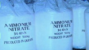 L'origine des explosions au Liban vient d'un stock de nitrate d'ammonium. En France, il existe plus de 100 stocks de ce produit. Faut-il craindre qu'un pareil drame se reproduise ? (FRANCE 2)