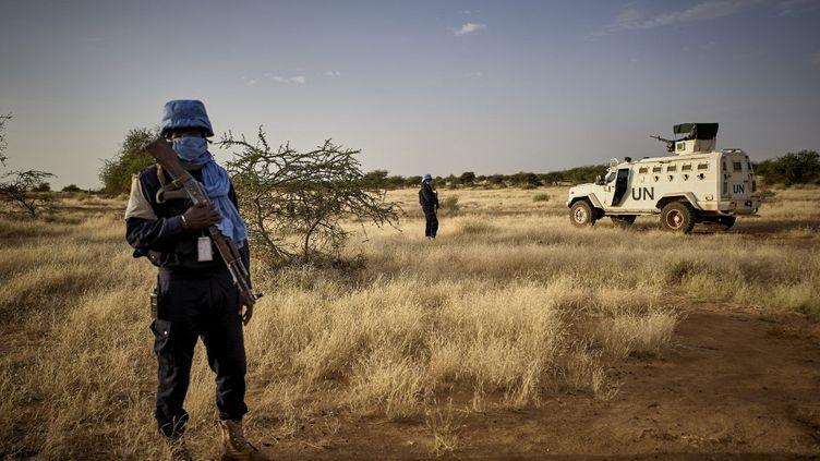 La police des Nations Unies dans la région de Gao, au Mali, le 16 octobre 2020. (MICHELE CATTANI / UNOCHA / AFP)