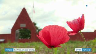 Il y a 80 ans, près deLyon(Rhône) 48 tirailleurs sénégalais étaient exécutés dans un champ par les nazis. Des photos de l'époque, jamais montrées, sont présentées au 19/20 par un historien. (France 3)