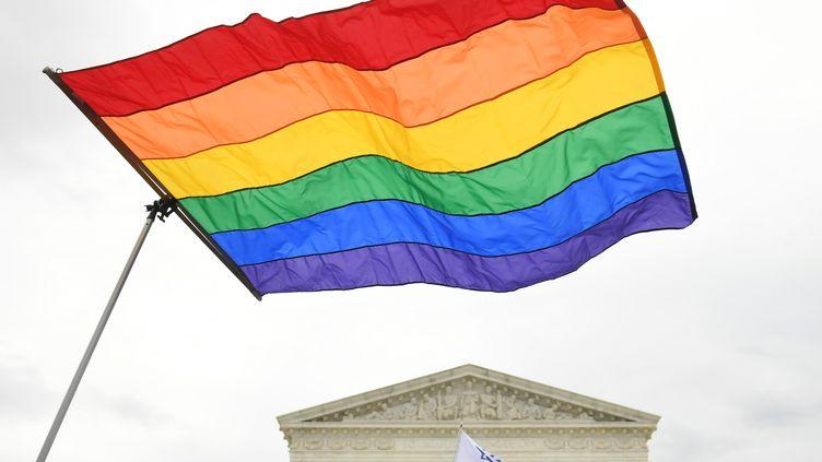 Le drapeau arc-en-ciel lors d'une manifestation pour les droits des LGBT+ à Washington (Etats-Unis), le 8 octobre 2019. (SAUL LOEB / AFP)