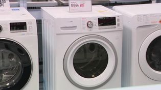 Lundi 17 février, la secrétaire d'État Brune Poirson réunissait les fabricants de lave-linges pour leur demander d'installer des filtres qui empêchent le passage des fibres plastiques dans les eaux usées. (FRANCE 2)