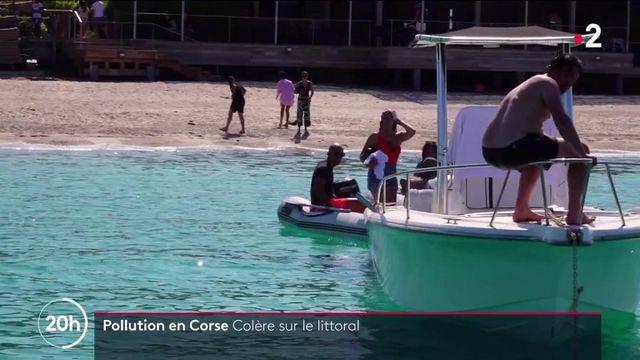 Dégazage sauvage d'un navire en Corse : l'opération de nettoyage mobilise toute l'île