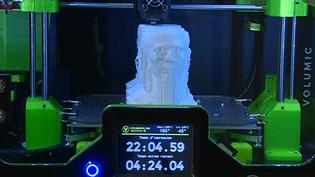 Grâce à la magie de l'imprimante 3D, Jules César reprend vie.  (France 3 / Culturebox)