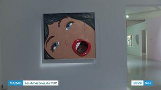 """Exposition """"She-Bam Pow POP Wizz! Les Amazones du Pop"""" au MAMAC à Nice, du3 octobre 2020au28 mars 2021. (France 3 Nice)"""