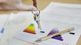 Les professionnels du diagnostic alertent le ministère de la Transition énergétique sur le très grand nombre de logements classés en F et en G. (CAMILLE MAZOYER / MAXPPP)