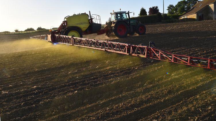 Un agriculteur utilise des pesticides dans un champ (photo d'illustration). (JEAN-FRANCOIS MONIER / AFP)