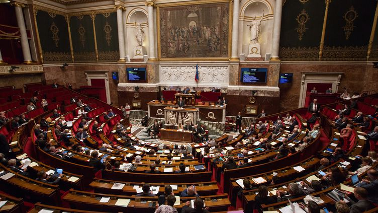 L'hémicycle de l'Assemblée nationale, le 19 juillet 2016. (IRINA KALASHNIKOVA / SPUTNIK / AFP)