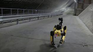 Une équipe de chercheurs britanniques s'est rendue à la centrale nucléaire de Tchernobyl (Ukraine) avec un robot hors du commun. Ultra high-tech et agile, il peut affronter des environnements hostiles. (France Info)