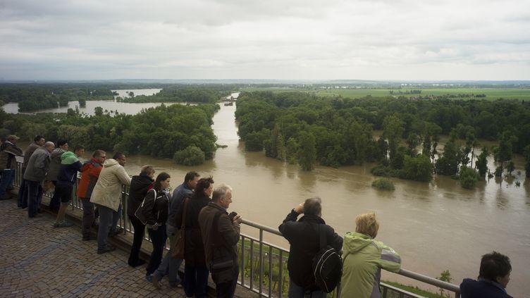 Les rives de l'Elbe, à Melnik, en République tchèque, le 4 juin 2013. (MICHAL CIZEK / AFP)