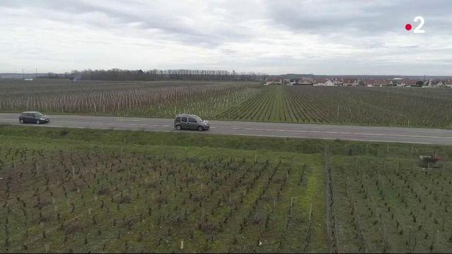 Sécurité routière : entre Beaune et Dijon, des records de signalisations