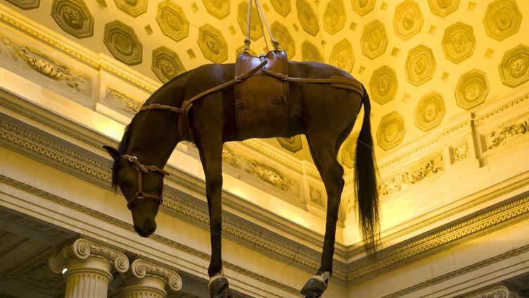 """""""Novencento"""" (1996), cheval naturalisé, oeuvre de Maurizio Cattelan suspendu au-dessus de l'escalier d'honneur de la Monnaie de Paris   (MaxPPP/Annie Viannet )"""