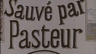 Histoire : au XIXe siècle, le succès international du vaccin contre la rage (FRANCE 3)